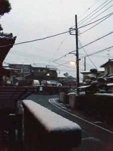 snow20100218_00.jpg