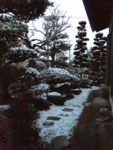 snow20100218_01.jpg