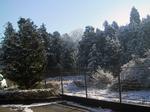 snowIMG_0008.jpg