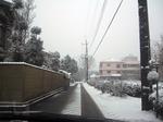 snow_0004.JPG