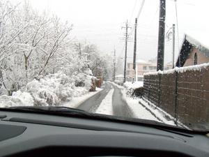 snow_2010_02.jpg